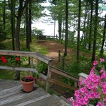 Foto de Thimbleberry Inn Bed and Breakfast