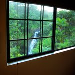 falls from bedroom window