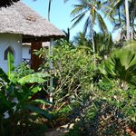 Photo of Waridi Beach Resort & Spa
