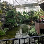 Φωτογραφία: Gaylord Opryland Resort & Convention Center