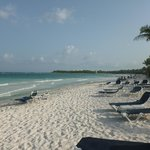 Bild från The Royal Suites Yucatan by Palladium