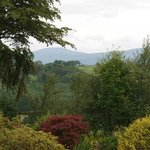 View from Braeburn Cottage