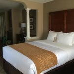 Comfort Inn and Suites Colonial resmi