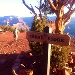Second view point stop on Kaibab trail