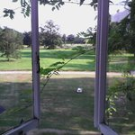 view of grounds from bedroom