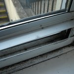 Mould on window frames