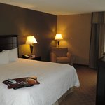 Foto van Hampton Inn Port Huron