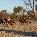 Foto de Horizon Horseback Adventures Lodge