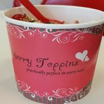 Merry Toppins Frozen Yogurt