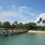 The Village Coconut Island resmi
