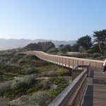 Pismo State Beach North Beach Campgroundの写真