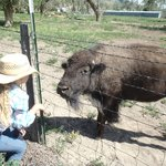 Foto Zapata Ranch - A Nature Conservancy Preserve