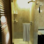 Bathroom with separate walk-in shower