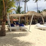 Bilde fra Occidental Grand Punta Cana