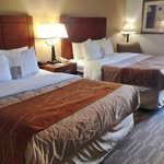Foto di Comfort Inn & Suites University South