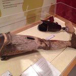 Wooden prosthesis