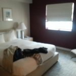 Edgewater South Beach의 사진