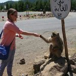 No, it's not our guide... making friends in the Mid Atlas Mountains