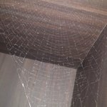 Scary spidernet over the coffemachine room 1102