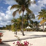 Foto de Mercure St Martin and Marina