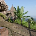 Foto van Mount Kilimanjaro View Lodge