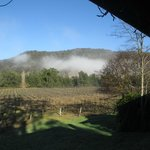 Cedar Creek Cottages & Wine Foto