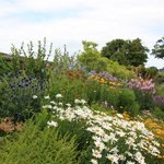 The world's longest herbaceous border