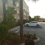 Springhill Suites by Marriott St. Petersburg/Clearwater resmi