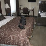 Foto van Staybridge Suites Milwaukee Airport South