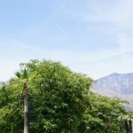 صورة فوتوغرافية لـ ‪The Saguaro Palm Springs, a Joie de Vivre Hotel‬