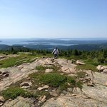 Gorham Mountain Trail Foto
