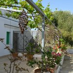 Photo of Masseria Casa Nostra