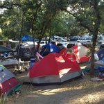 Tent city from a disaster movie.