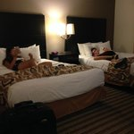 BEST WESTERN PLUS Newark/Christiana Inn Foto