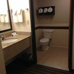 Foto de BEST WESTERN PLUS Newark/Christiana Inn