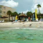 Sandcastle Resort at Lido Beach resmi