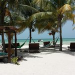 Photo de Holbox Hotel Mawimbi