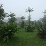 Foto di Villa Blanca Cloud Forest Hotel and Nature Reserve
