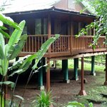 Foto Selva Verde Lodge