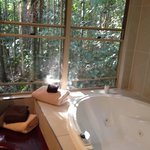 Foto di Narrows Escape Rainforest Retreat