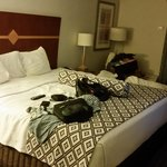reserved a room w/2 beds, paid for a king w/a rollaway bed. Really!