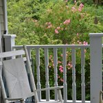 Billede af Magnolia House Bed and Breakfast