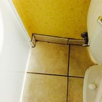 Dirtiest grout ever I seen at Holiday Inn and suites, Woodbridge, VA