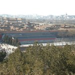 A View of Forbidden City-From a hill in Jianshang Park