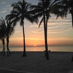 Foto van Marriott Hollywood Beach