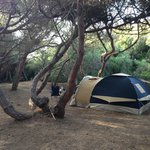 Photo of Is Arenas Camping Village