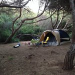Foto de Is Arenas Camping Village