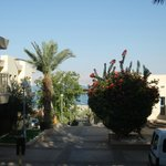 Photo de Ein Gedi - Beit Sarah Guest House