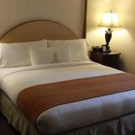 Royal Sonesta Hotel New Orleans resmi