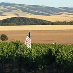 Walla Faces Inns at the Vineyard Foto